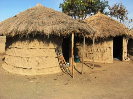 www.thomasmeares.com/photogallery/Traditional%20African%20Houses.JPG